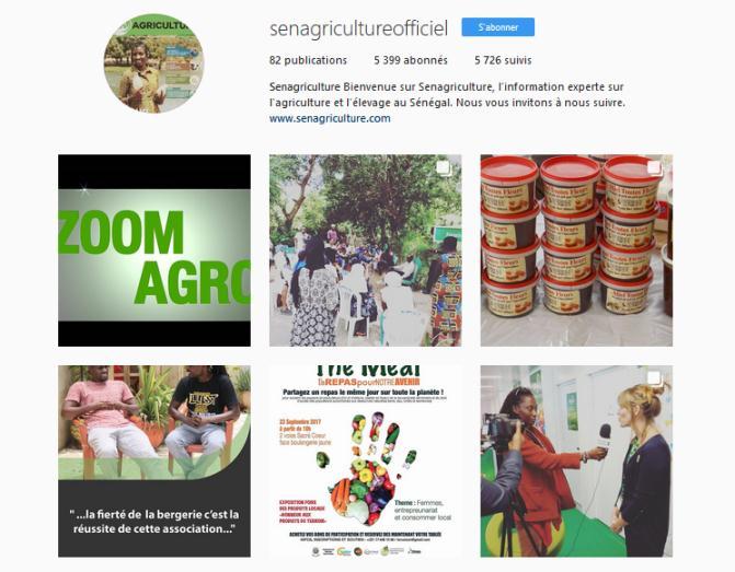 réseaux sociaux senagriculture, senagriculture Instagram, stratégie réseaux sociaux, réseaux sociaux agriculture, promotion agriculture