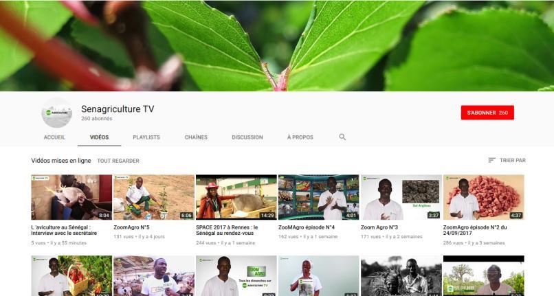 réseaux sociaux senagriculture, senagriculture Youtube, stratégie réseaux sociaux, réseaux sociaux agriculture, promotion agriculture